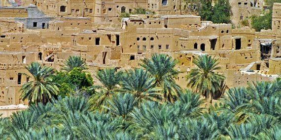 Oasis Al Hamra Oman Tour