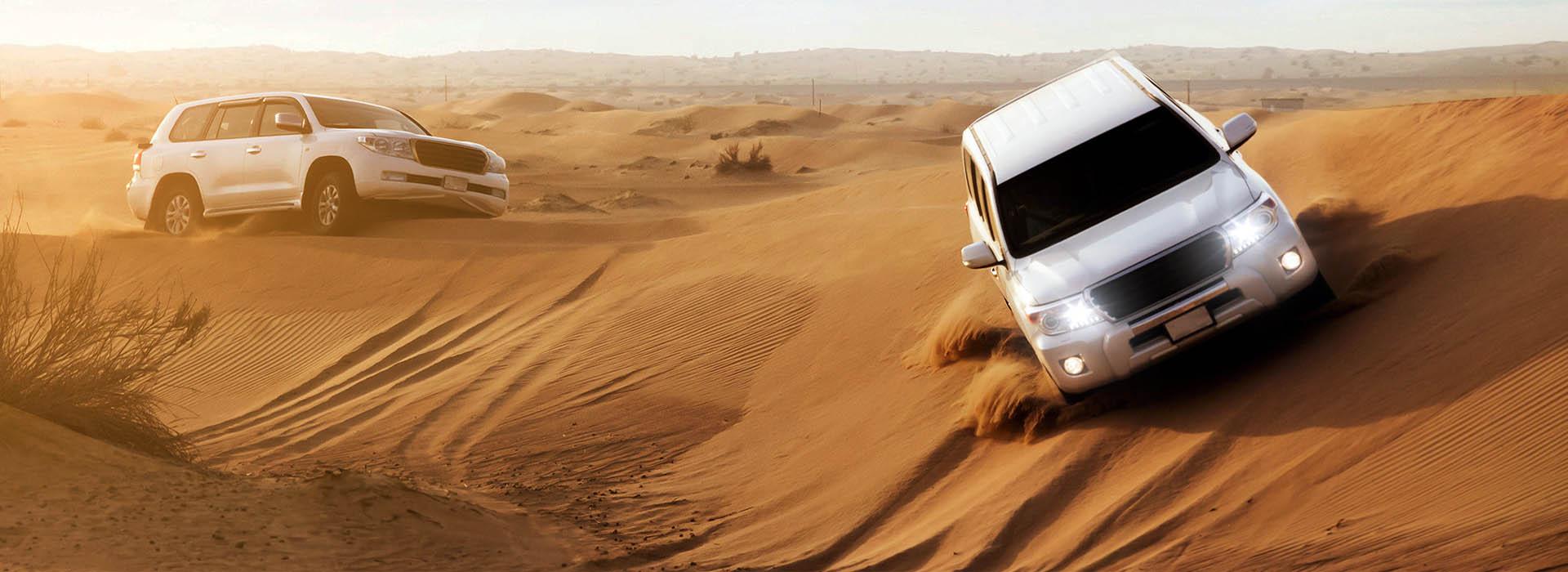 Desert Drive Oman Tour